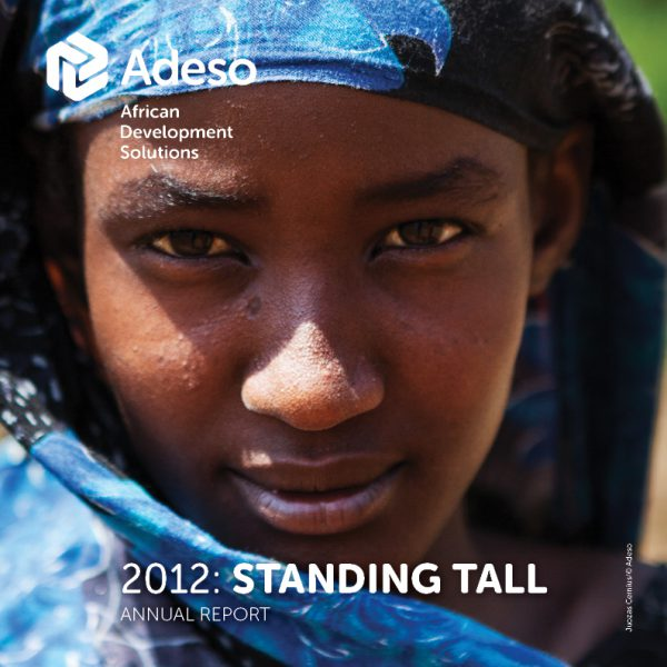 Adeso – Annual Report
