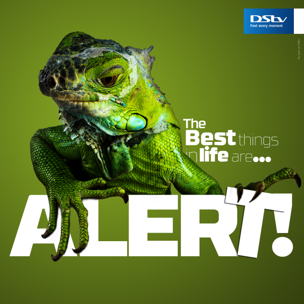 DStv – The Best Things in Life…